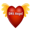DNS Angel icon