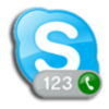 Skype Office Toolbar icon