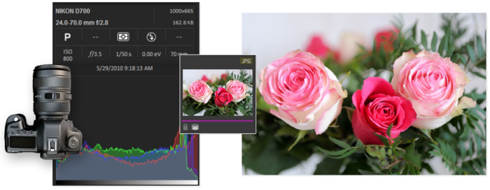 Screenshot 10 of ACDSee Photo Studio Professional 2018