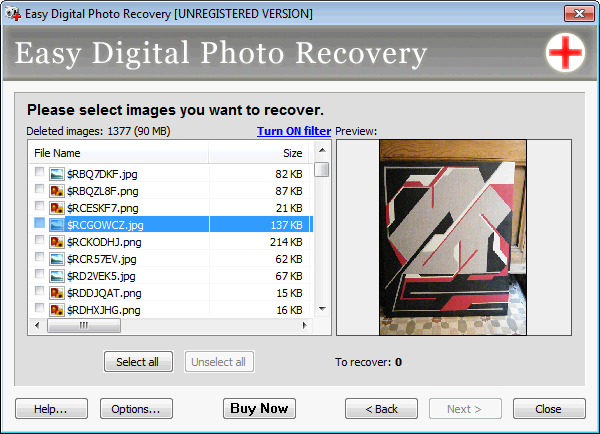 Screenshot 3 of Easy Digital Photo Recovery