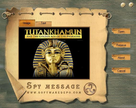Screenshot 2 of Free Spy Message